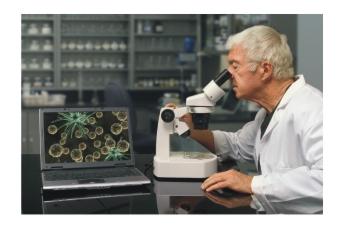 disease-control-in-hydroponics